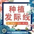 北京种植发际线 超值体验价  200单位FUE无痕植发套餐