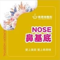 鼻基底填充